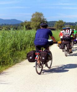 Bike Damen